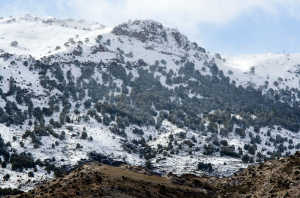 Nieve en la sierra